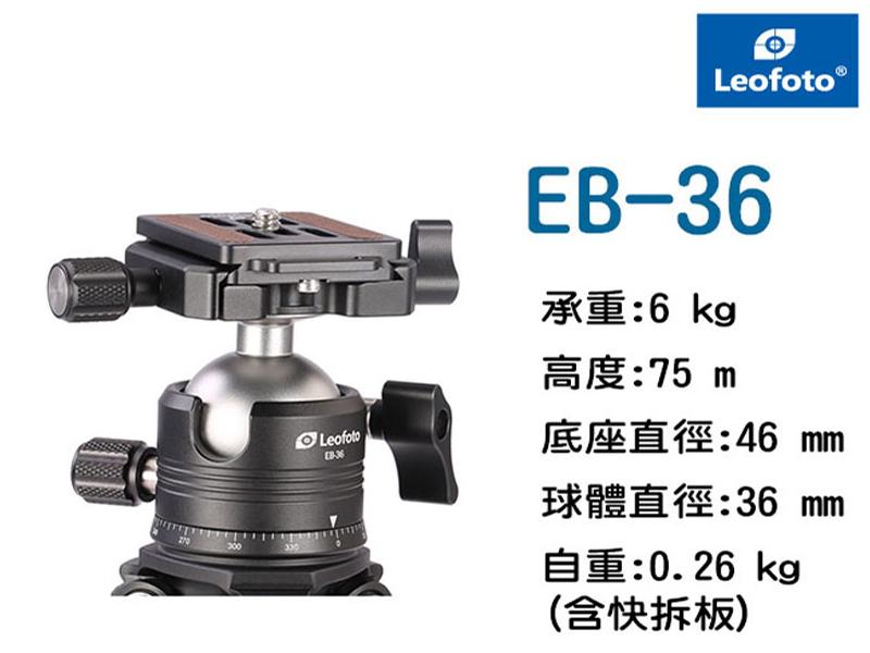 EB-36